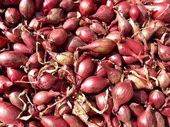 red-shallots-5768__180