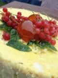 cheesecake citron groseilles clémentines confites
