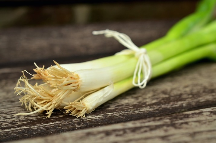 spring-onions-845032_960_720