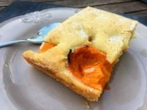 Gâteau aux abricots (7)